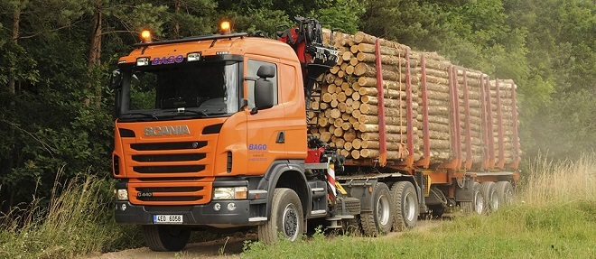 Перевозка леса автотранспортом