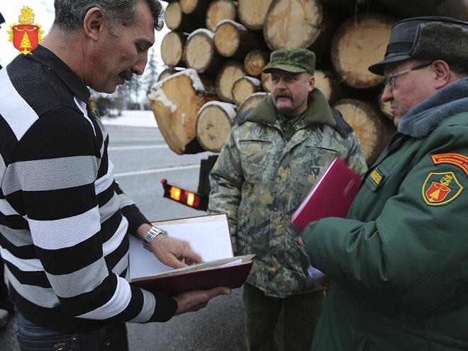 Сопроводительный документ на транспортировку древесины